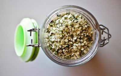 Hemp Seed Oil Benefits for Healthy Living