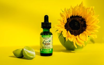 Benefits of Sunflower Oil: Is it Good for You?